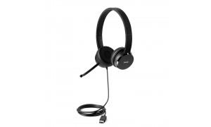 LENOVO 100 USB Stereo Headset ausinės (4XD0X88524)
